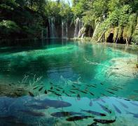 Біопрепарат Біо-плюс для шокової очищення ставків та акваріумів