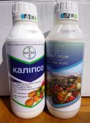 Calypso insecticide for the garden and vegetable garden