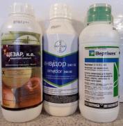 vertimek insecticide for garden and vegetable garden